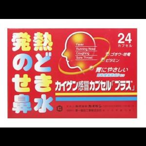 카이겐 감기약 플러스 (24캡슐)