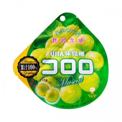 코로로 젤리 청포도맛 48g (6세트)