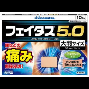 페이타스 5.0 대형 (10매)